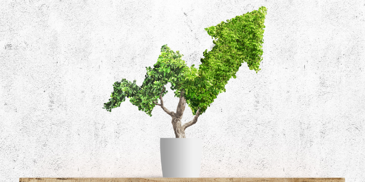 Sustainable Investing – Live More Zone