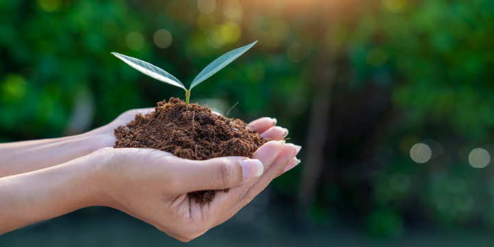 Sustainable Investing trend – Live More Zone