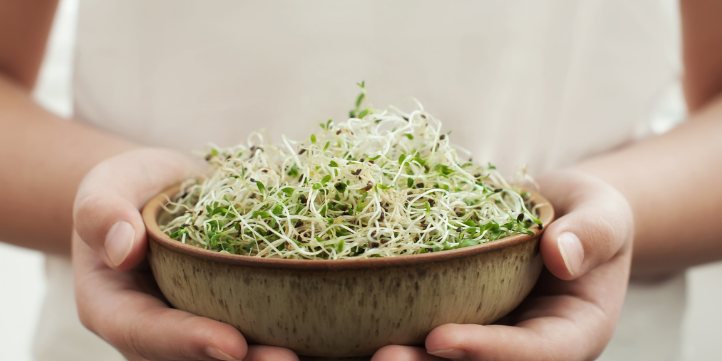 Sprouts Salad – Live More Zone