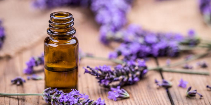 Best Essential Oils for Skin That is Dry – Live More Zone