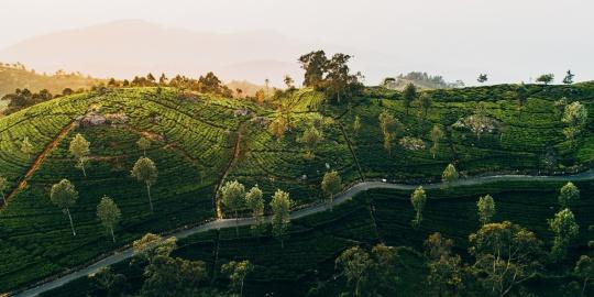 #TravelBucketlist – 10 Reasons Why You Should Holiday in Sri Lanka