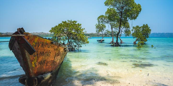 Andaman  – Live More Zone