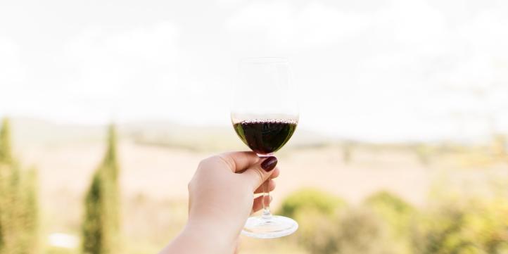 Bandra Wine Festival  – Live More Zone