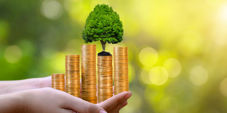 Benefits of Green Banking  – Live More Zone