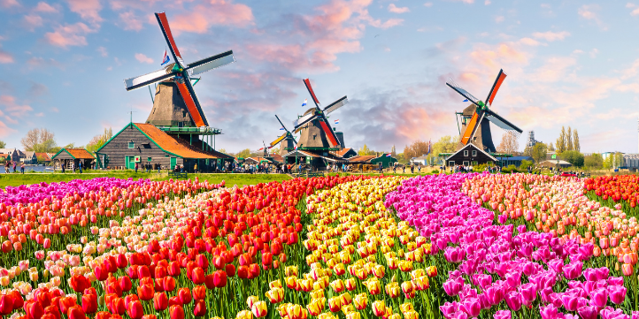 Best time to visit Amsterdam – Live More Zone
