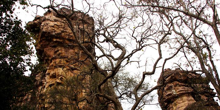 Bhimbetka Caves  – Live More Zone