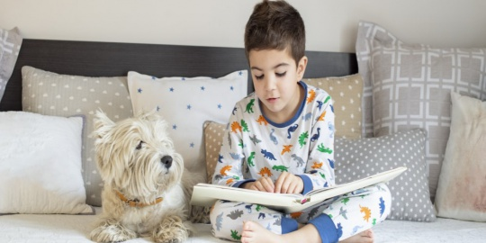 7 Books That You Can Add To Your Kid's Reading List