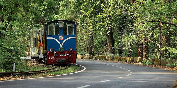 Darjeeling - Live More Zone