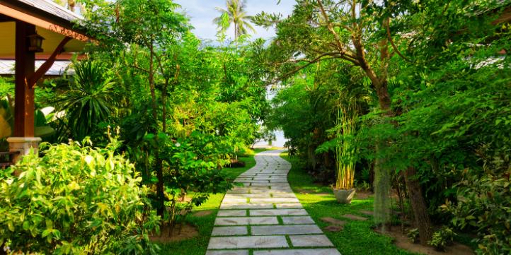 Resorts in Delhi  – Live More Zone
