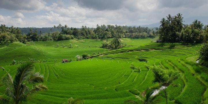 Koraput to Rayagada - Live More Zone
