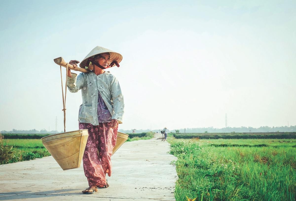 Vietnam Travel Ideas For A Perfect Trip