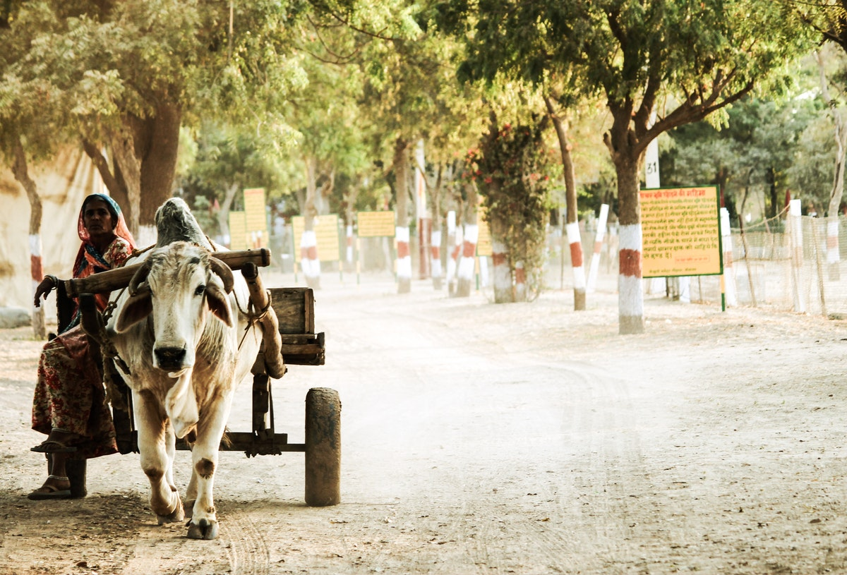 Explore These Places To Experience Rural Tourism In India