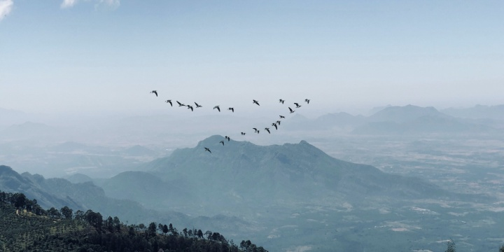5 Best Places To Visit In Ooty