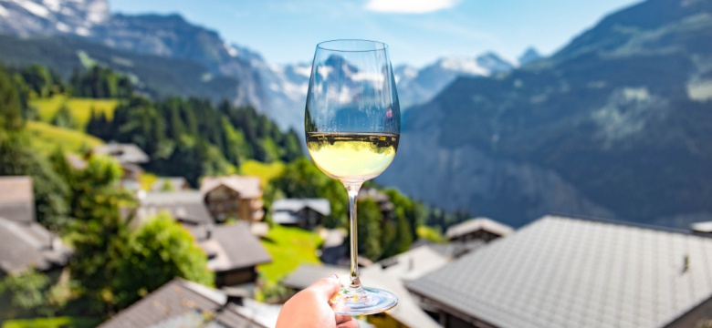 7 Best Indian Wine Brands You Must Try