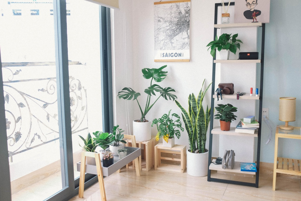 Functional space for plants