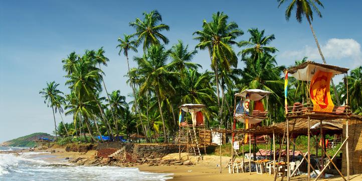 Goa – Live More Zone