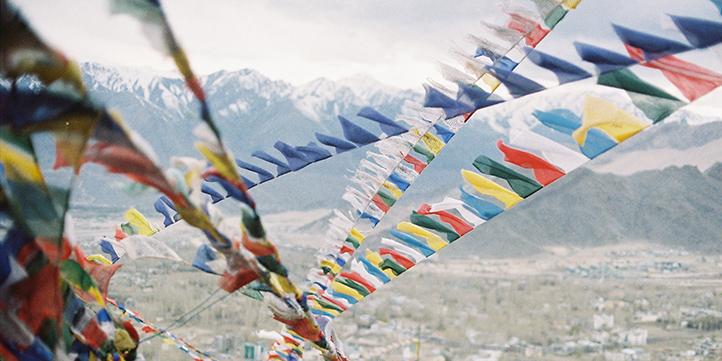 Ladakh Festival - Live More Zone
