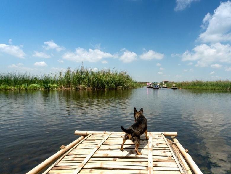Destination Guide: Go Rafting, Birding Or Relax At Mulshi Lake