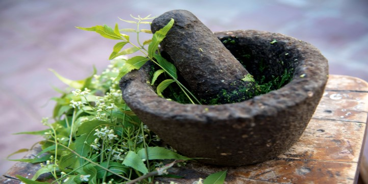Neem and turmeric for boosting immunity  – Live More Zone