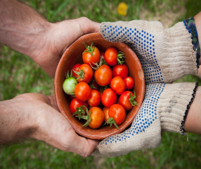 Want To Go Organic? Shop At These Farmers' Markets