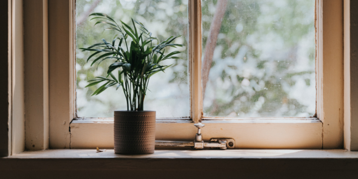 Eco friendly paint  – Live More Zone