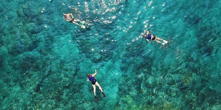 Palau - Live More Zone