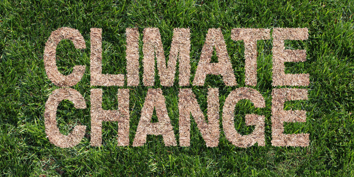 Climate Change  – Live More Zone