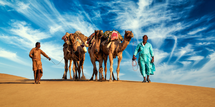 Rajasthan  – Live More Zone