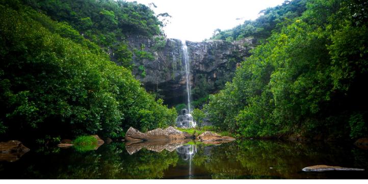Tamarin Falls  – Live More Zone