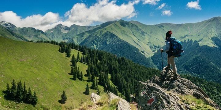Shimla Road Trip - Live More Zone