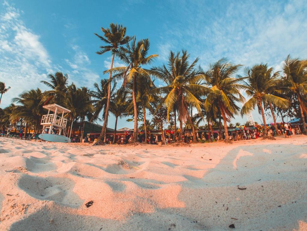Coronavirus Will Go Away In Summer - Live More Zone