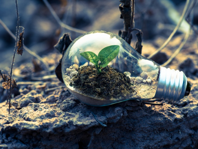 10 Incredible Ways To Bring Sustainability Into Your Life