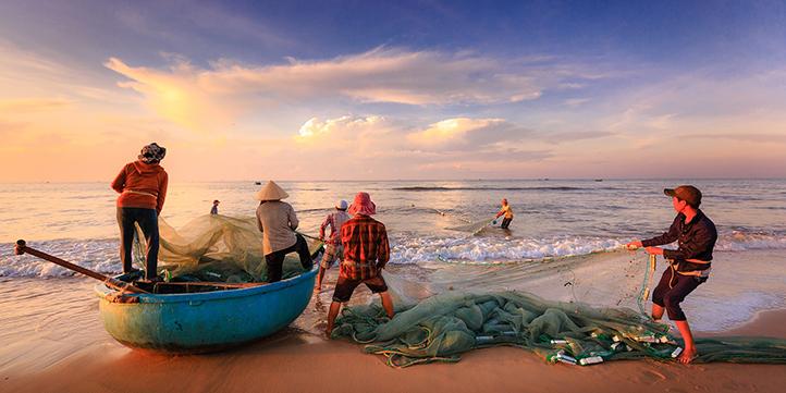 Vietnam - Live More Zone