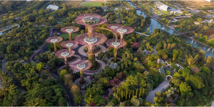 Visit Gardens By The Bay – Live More Zone