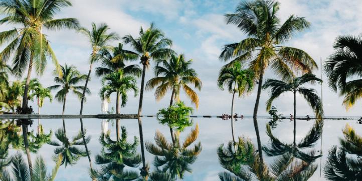 Visit Mauritius  – Live More Zone