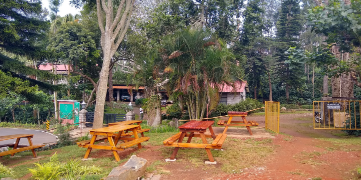 Yercaud – Live More Zone